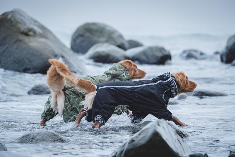 nepromokavé pláštěnky pro psy
